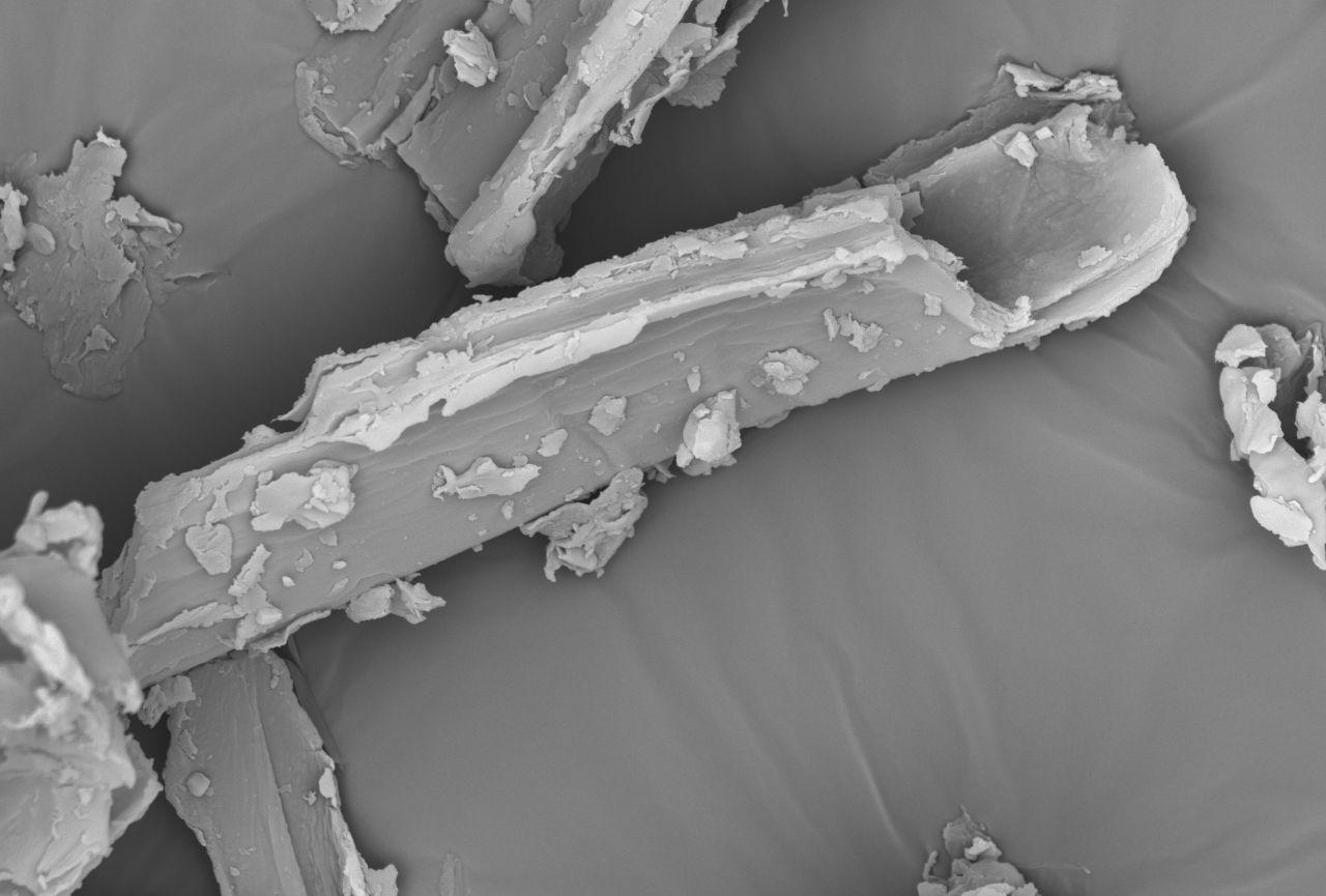 Heupartikel unter Mikroskop